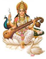 Saraswati Pooja 2014