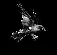 A Sacred Passing logo