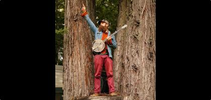 Tall Tall Trees / Christopher Paul Stelling / JPhono1