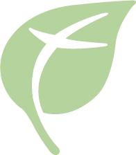 The Family Childbirth & Children's Center at Mercy logo
