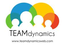 Team Dynamics LLC logo