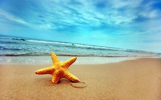 Strand & Sand FREE Fitness Program