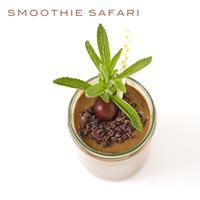 Smoothie Safari