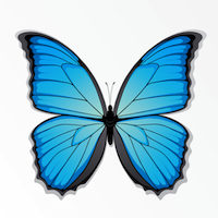 JamiShel logo