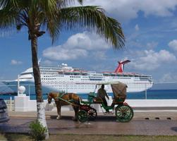 Party at Sea (Grand Cayman & Cozumel) Cruise 2015