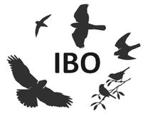 Intermountain Bird Observatory logo