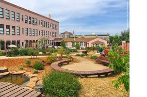Workshop: Greening Schoolyards