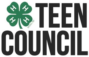 Teen Council - October