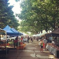 Wooster Square Farmers Market & Little Italy Walking...