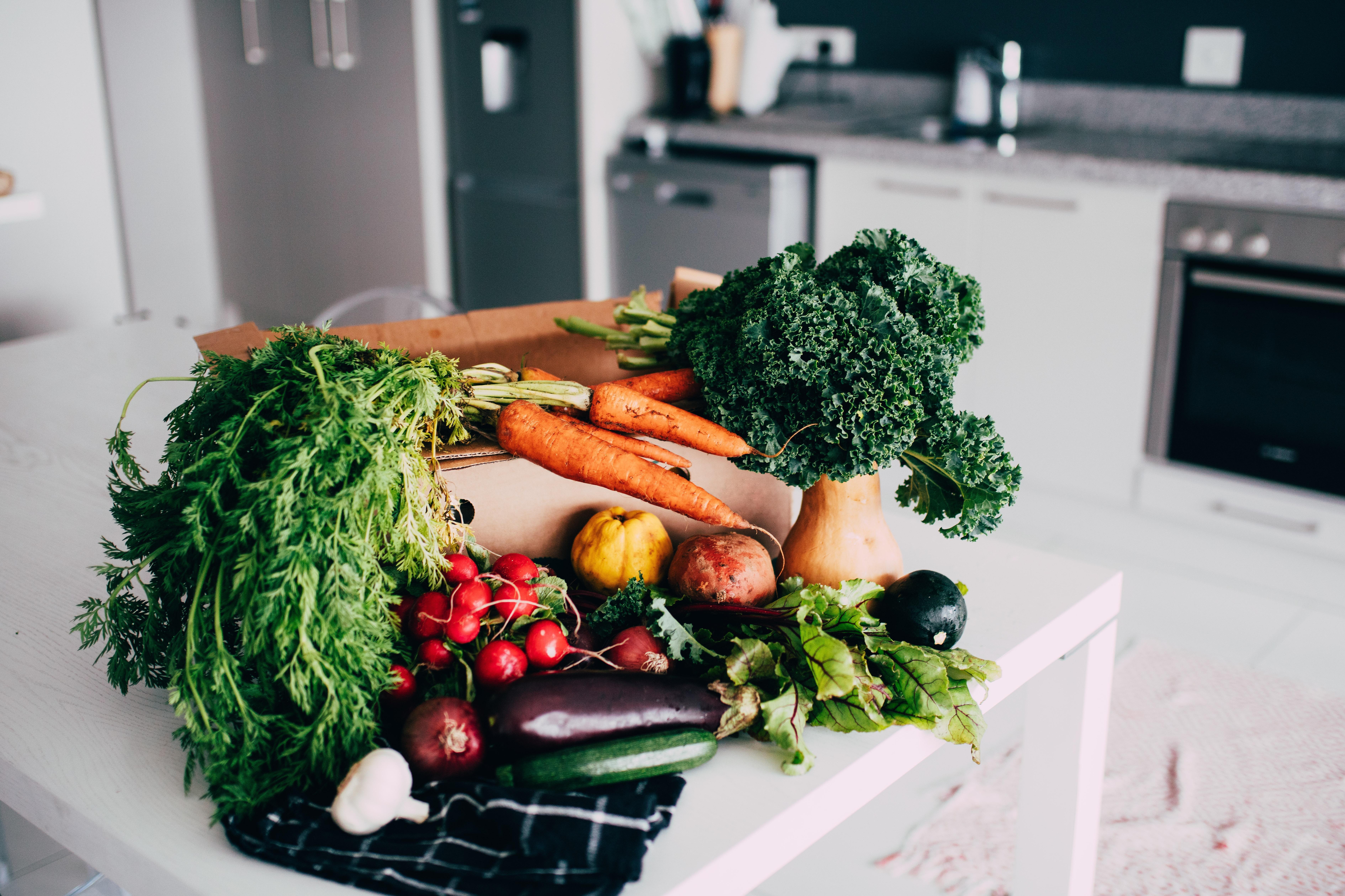 Chicago Vegan Test Kitchen