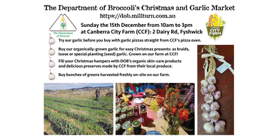 Christmas and Garlic Market by The Department of Brocco...