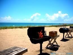 TAP-Chicago BBQ/Beach Day w/University of IL Asian...