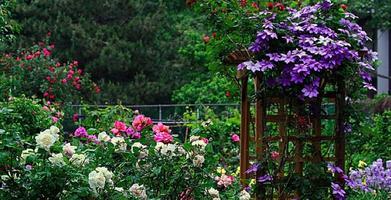 FREE Secret Gardens of the West Village