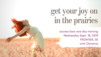 GET YOUR JOY ON - ONE DAY ACCESS BARS TRAINING -...