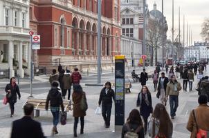 The London Society : Albertopolis's Cultural High...