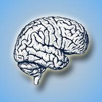 Webinar: Mindfulness, the Brain and Business