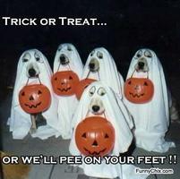 Halloween Party on Halloween Night!