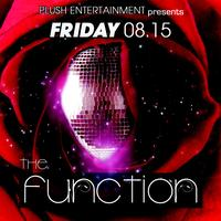 The Function - An Arts & Music Experience - Benefiting...