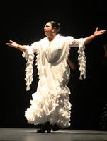 Flamenco Dance Workshop: Carmen Ledsema, Direct from...