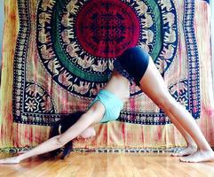 Yoga Basics Semi-Private Class