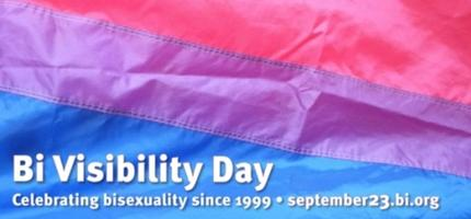 From Bi-Visibility to Bi-Inclusion: A Discussion