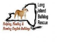 Long Island Bulldog Rescue logo