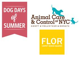 Dog Days of Summer - Adoption Events - NYC