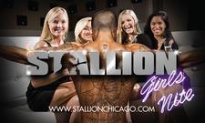Stallion Male Revue logo