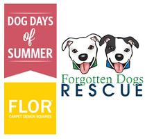 Dog Days of Summer - Adoption Events - Seattle