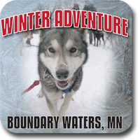 Winter Adventure - Dog Sledding, Snowshoeing & XC...