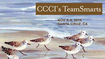 CCCI's TeamSmarts