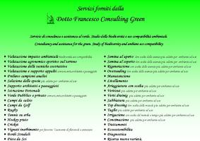 Dotto Francesco Consulting Green