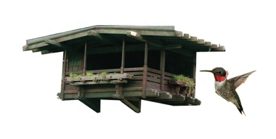 The Gamble Birdhouse Workshop