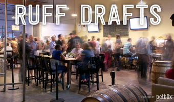 Ruff Drafts Hosted by PetBox