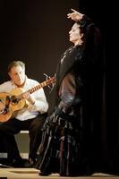 Flamencos por La Peña!