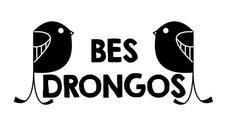 BES Drongos logo