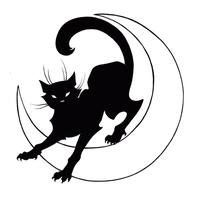 The Black Cat Cabaret - 18th January