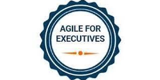 Agile For Executives 1 Day Virtual Live Training in Halifax