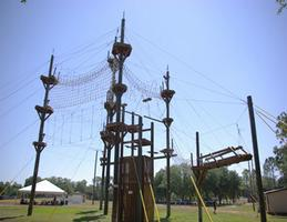 USF DAHR Fall Welcoming Kick-Off: Low & High Ropes...