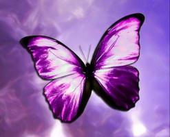 Metamorphosis - Encourage, Equip, Empower! An...