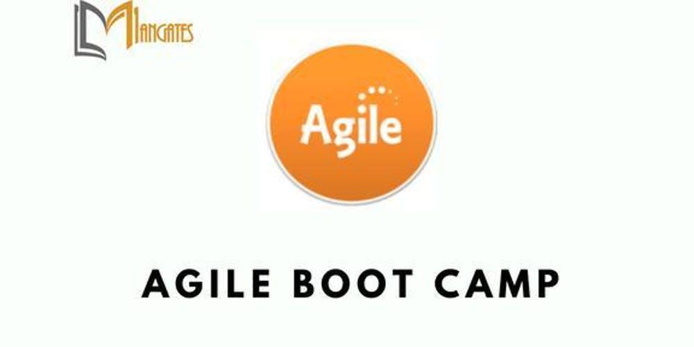 Agile 3 Days Virtual Live Bootcamp in Halifax