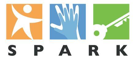 Spark Mentor Orientation hosted by Deloitte