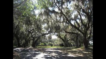 SOLD OUT: Adult Camping Weekend | Sapelo/Cabretta...