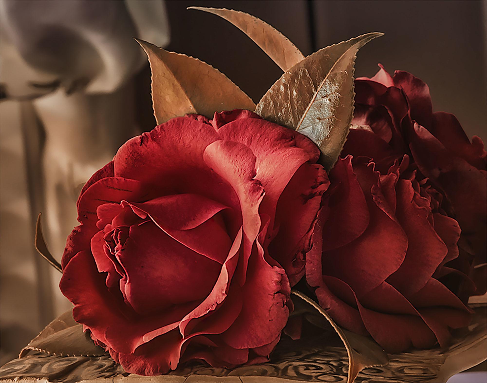 DIY Workshop: Holiday Camellias Flower-Making Workshop