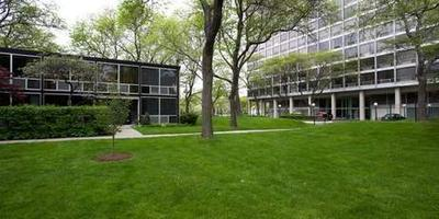Thanks for the View, Mr. Mies: Lafayette Park, Detroit...