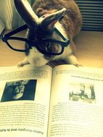 Vegan/ Rights Book Swap for Woodstock Farm Animal...