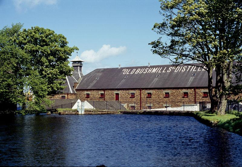 Giant's Causeway and Bushmills Whiskey tasting tour from Belfast (May20-Aug20)