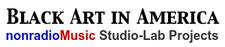 Black Art In America / Do You Basel™ Event Progamming logo