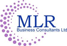 MLR Business Consultants Ltd logo