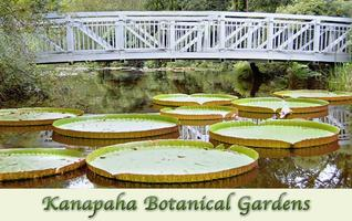 Pledge 5 Volunteer Day - Kanapaha Botanical Gardens